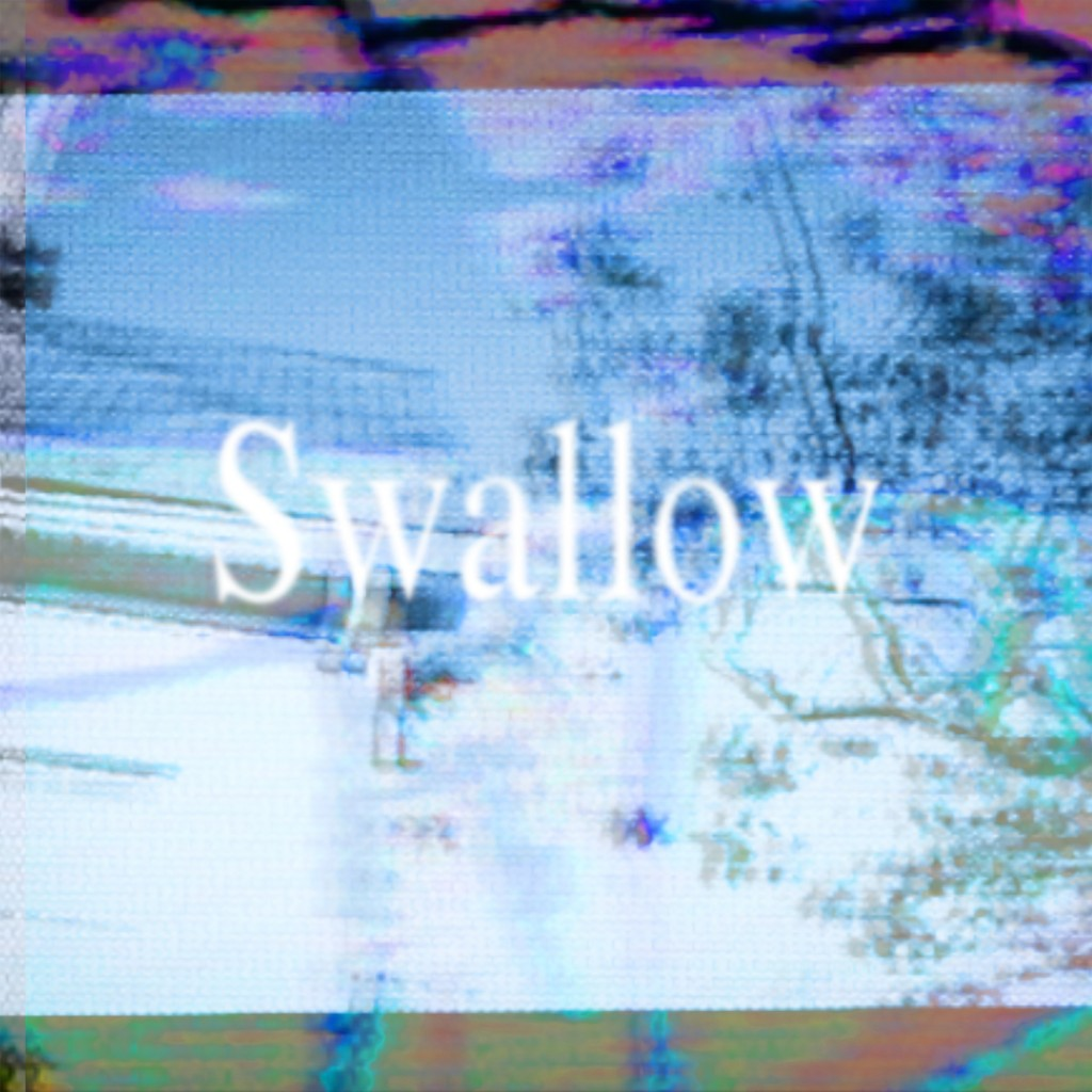 Swallow-cover